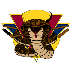 Logo of Vernon Vipers