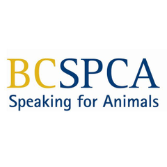 Logo of BC SPCA North Peace Branch (Fort St. John)