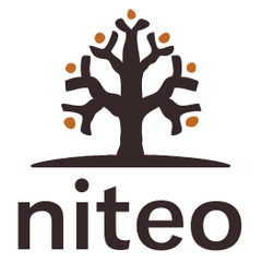 Logo of Niteo Africa Society